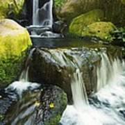 Waterfall Stream Poster