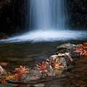Waterfall And Leaves In Autumn Poster