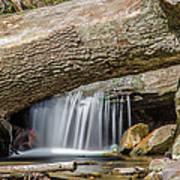 Waterfall Under Fallen Log Poster