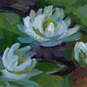 Waterlilies At Martha Lake 2 Poster