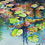 Waterlilies In Shadow Poster