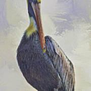 Waterway Pelican Poster by Deborah Benoit