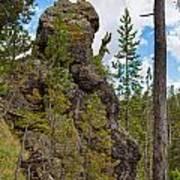 Waving Rock At Yellowstone Poster