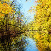Waxen Autumn 1  Poster