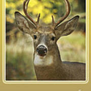 Way To Go Dad Congratulations On A Successful Deer Hunt Poster