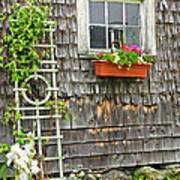 Weathered Maine Seacoast Barn Poster