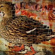 Weird Duck Poster by Cindi Finley Mintie