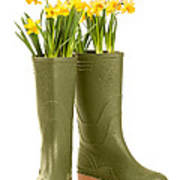 Wellington Boots Poster by Amanda Elwell