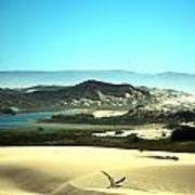 Wetlands In The Dunes Poster