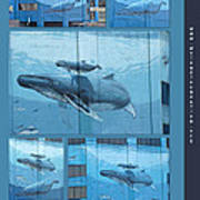 Whaling Wall 42 -  East Coast Humpbacks - Original Painting By Wyland Poster