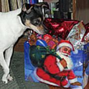 What Did Santa Bring Me Poster