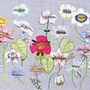 What's In A Flower Poster
