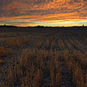 Wheat Stubble Sunset Poster by Mike  Dawson