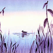 When The Sky Melts With Water A Peaceful Pond Poster