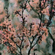 Whispering Cherry Blossoms Poster by Janice MacLellan