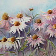 White And Pink Coneflowers Poster by Patsy Sharpe