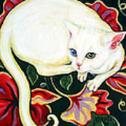 White Cat On A Cushion Poster