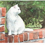 White Cat On Brick Wall Watercolor Portrait Poster