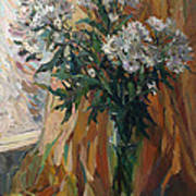 White Chrysanthemums Poster