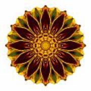 Deep Orange Marigold V Flower Mandala White Poster