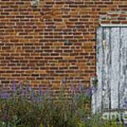 White Door In Brick Building Poster