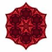Dying Amaryllis IIi Flower Mandala White Poster