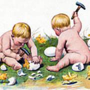 White Eggs Poster