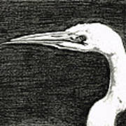 White Egret Art - The Great One - By Sharon Cummings Poster