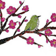 White Eye And Japanese Plum Tree Poster