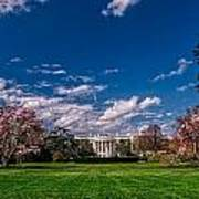White House Lawn In Spring Poster