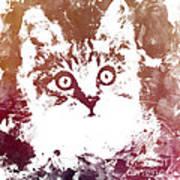 White Kitty Poster