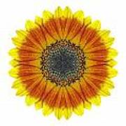Orange And Yellow Sunflower I Flower Mandala White Poster