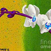 White Orchids On Yellow And Green Poster
