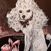 White Poodle  Poster