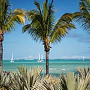 White Sails. Mauritius Poster