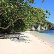White Sand And Blue Sky Poster