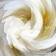 White Satin Swirl Poster