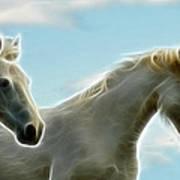 White Stallions Poster