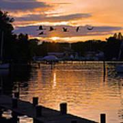 White's Cove Silhouette Poster
