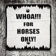 Whoa For Horses Only Sign In Black And White Poster