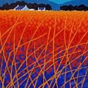 Wicklow Meadow Poster by John  Nolan