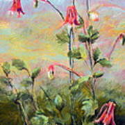 Wild Columbines Poster by Lenore Gaudet