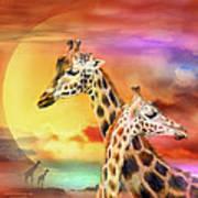 Wild Generations - Giraffes  Poster