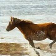 Wild Horse Running Through Water Poster