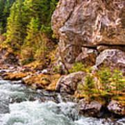 Wild Mountain River Poster