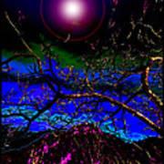Wild Plum In New World Dawn Poster