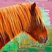 Wild Pony Abstract Poster