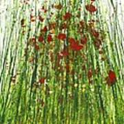 Wild Poppies And Grasses No2 Poster