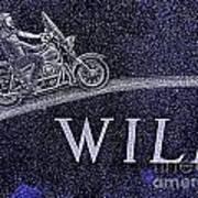 Wild Ride Poster