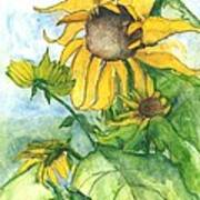 Wild Sunflowers Poster by Sherry Harradence